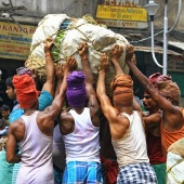 kolkata-india-hard-working-men-vegetable-market