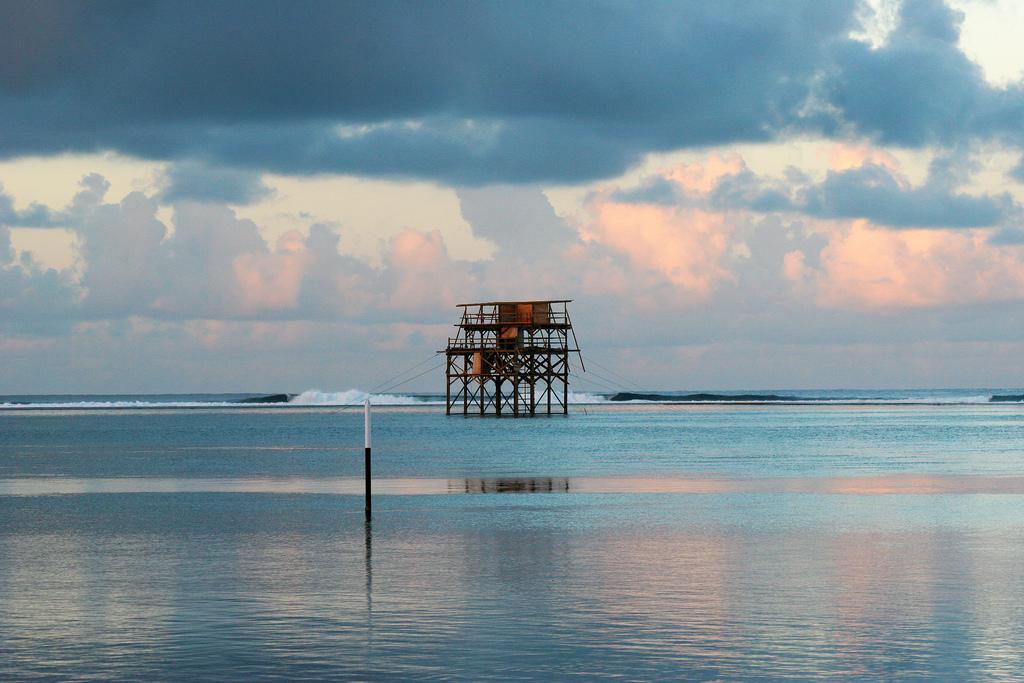 The judging tower at dawn.
