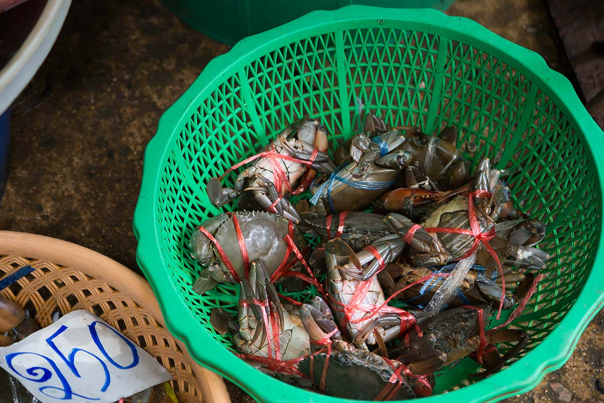 Fresh crabs are a speciality at Khlong Toey fresh market.