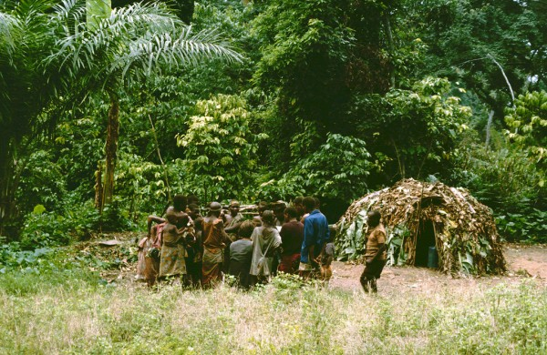 Pygmees in the Ituri Forest in the Congo.