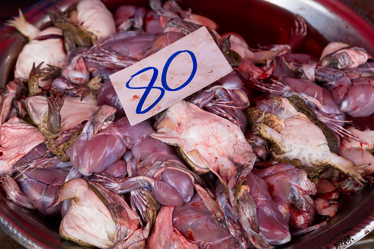 Dead frogs are just one of the many gruesome things you will come across at Khlong Toey fresh market.