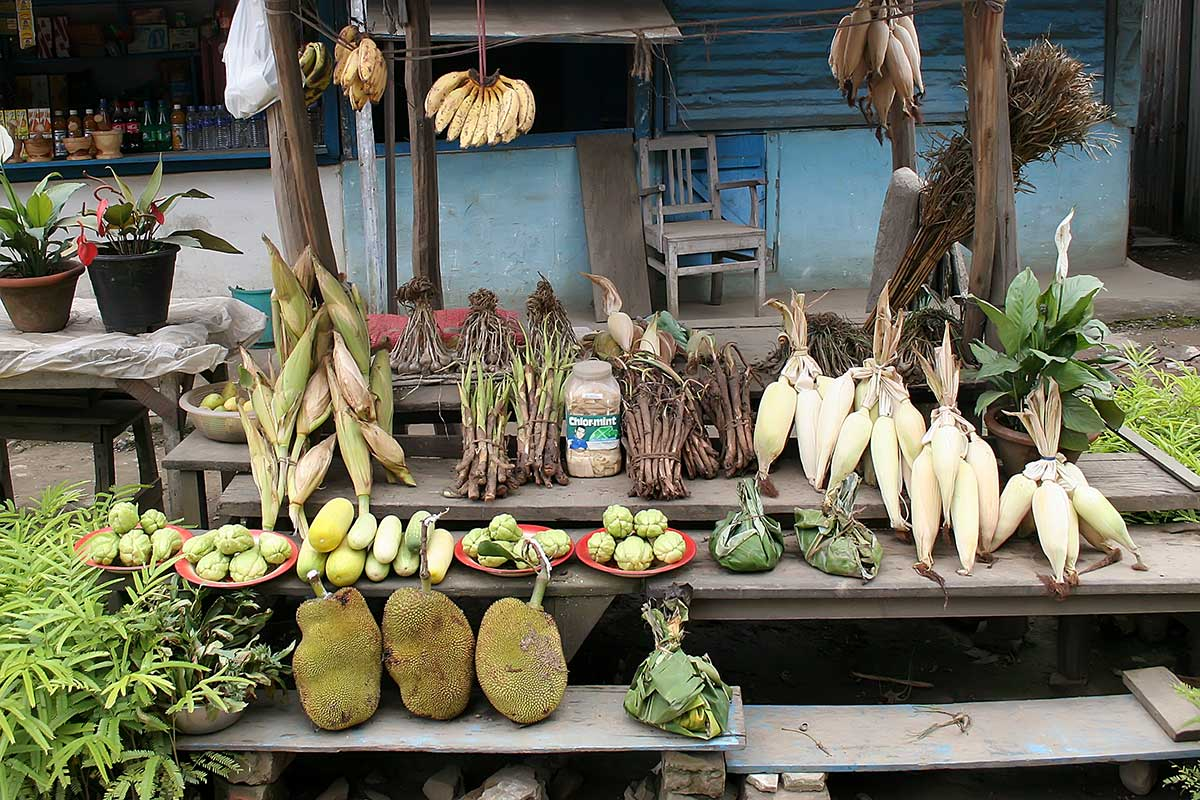 street-vendor-vegetables-market-dimapur-nagaland-india