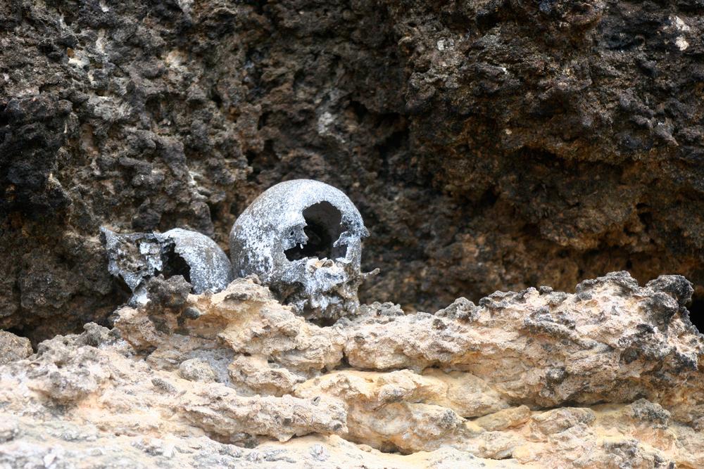 Human skulls in Raja Ampat.