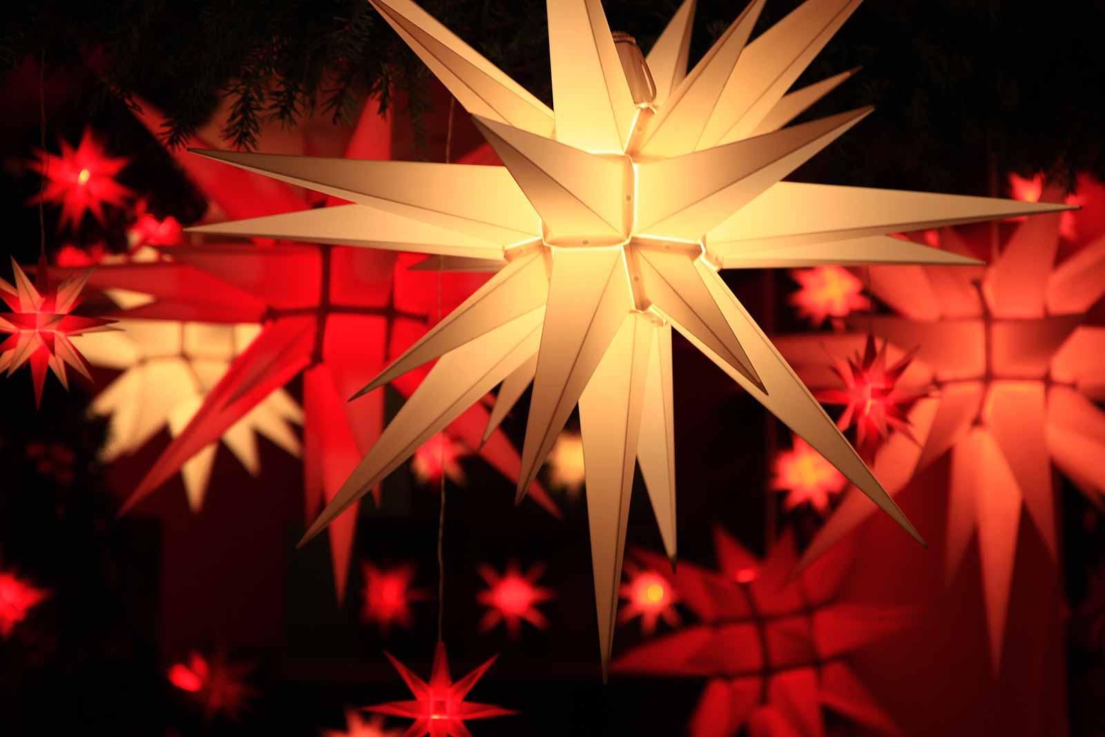 Christmas stars.