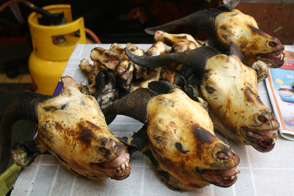 Burned Goat Heads In India