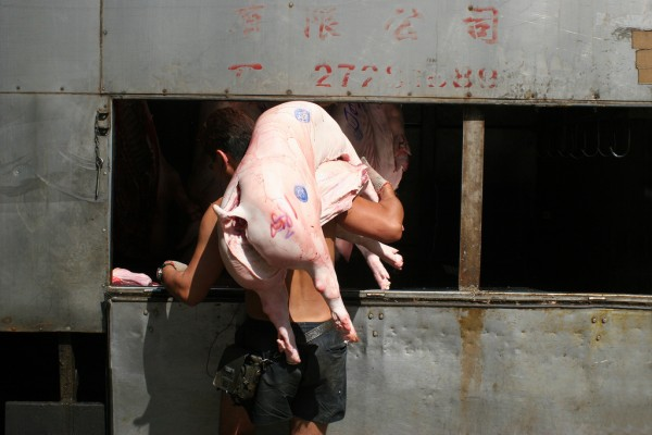 Carring a dead pig into a market in Hong Kong.