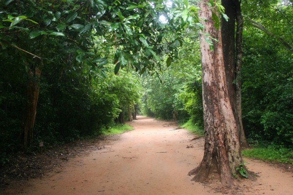Away from the tourist areas, Angkor can really be a bit spooky.