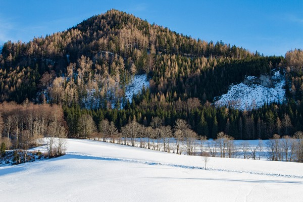 Winter landscape in the Alps in Lower Austria.