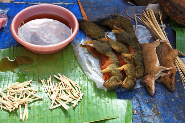Bush meat in Laos.