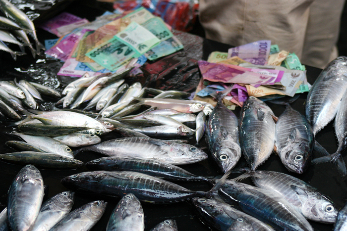 Fresh fish is always available at the market in Padang.