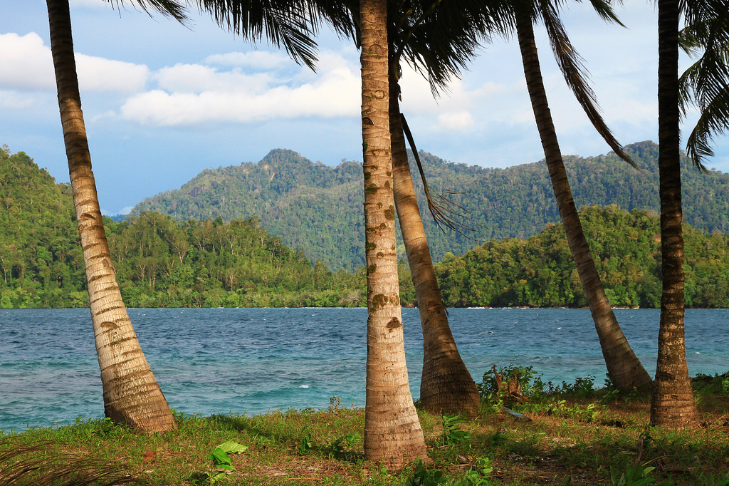 A tropical paradise off the coast of Sumatra.