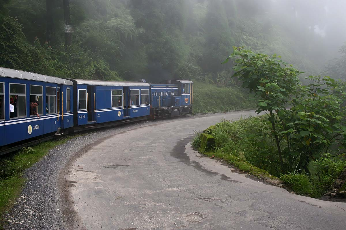 The train ride up to Darjeeling mostly leads through thick fog right next to the street.