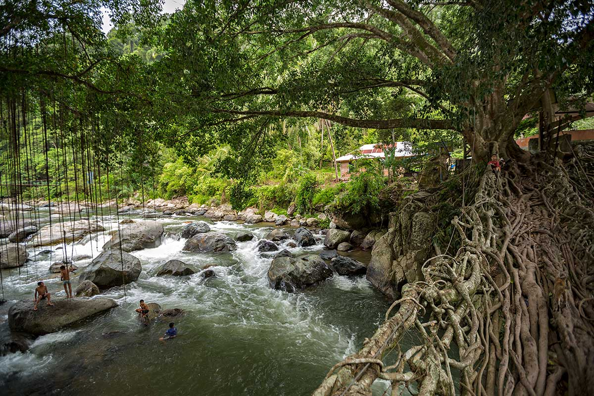 Jembatan Akar is Indonesia's Living Root Bridge. Located over the Batang Bayang river in West Sumatra, Indonesia, a bridge made of living tree roots connects two villages.