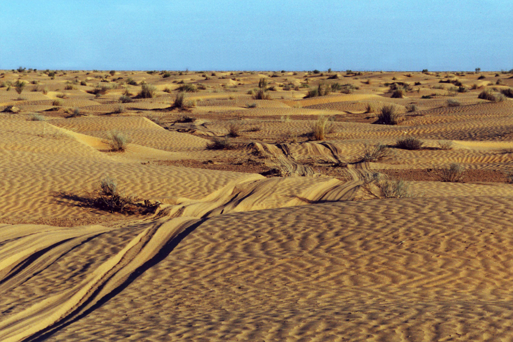 The Sahara desert is one of the hottest places.