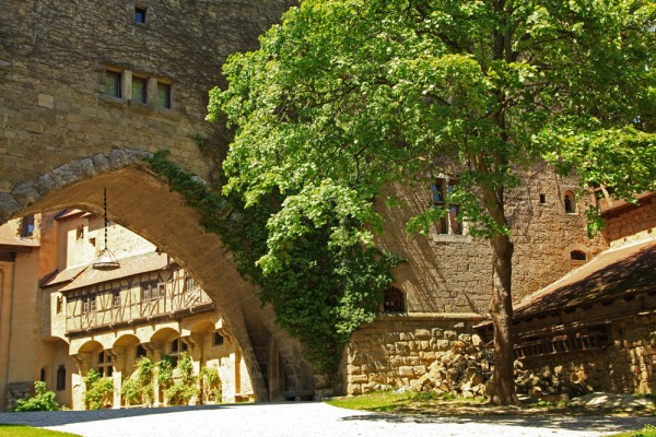 Trees are also growing inside Burg Kreuzenstein.