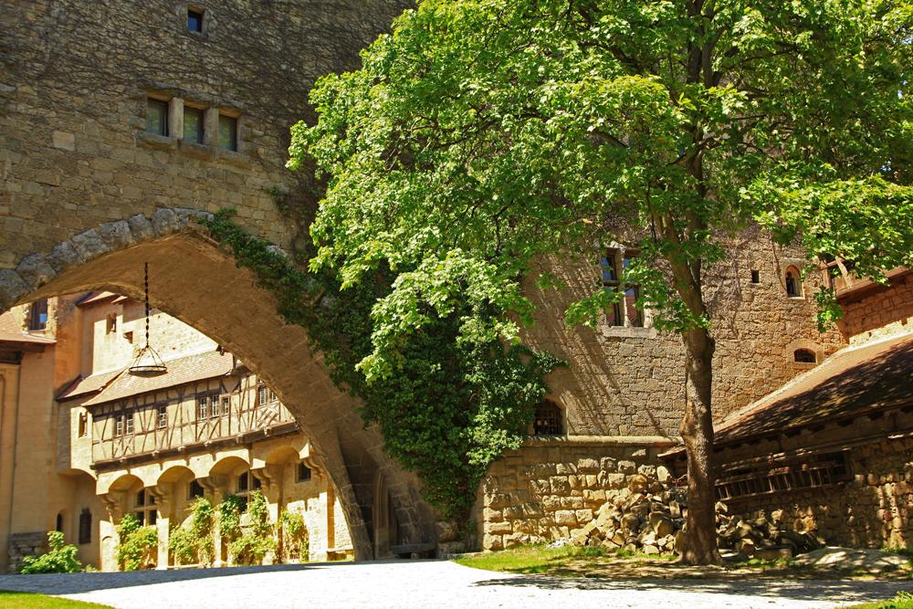 Trees are also growing inside Burg Kreuzenstein.