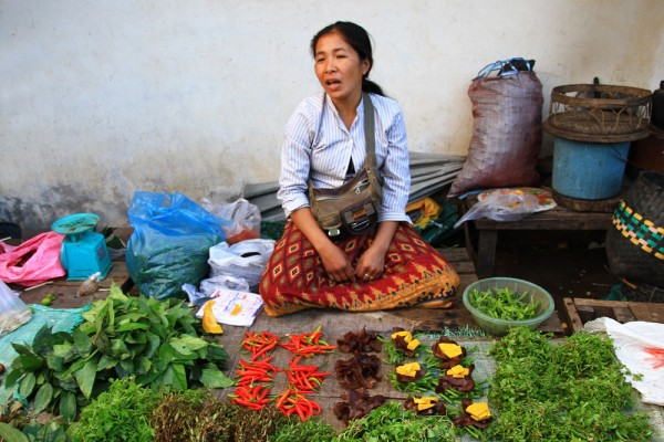 Market woman in Laos selling vegetable.