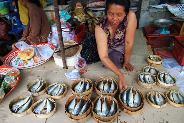 Market woman in Laos selling fish.