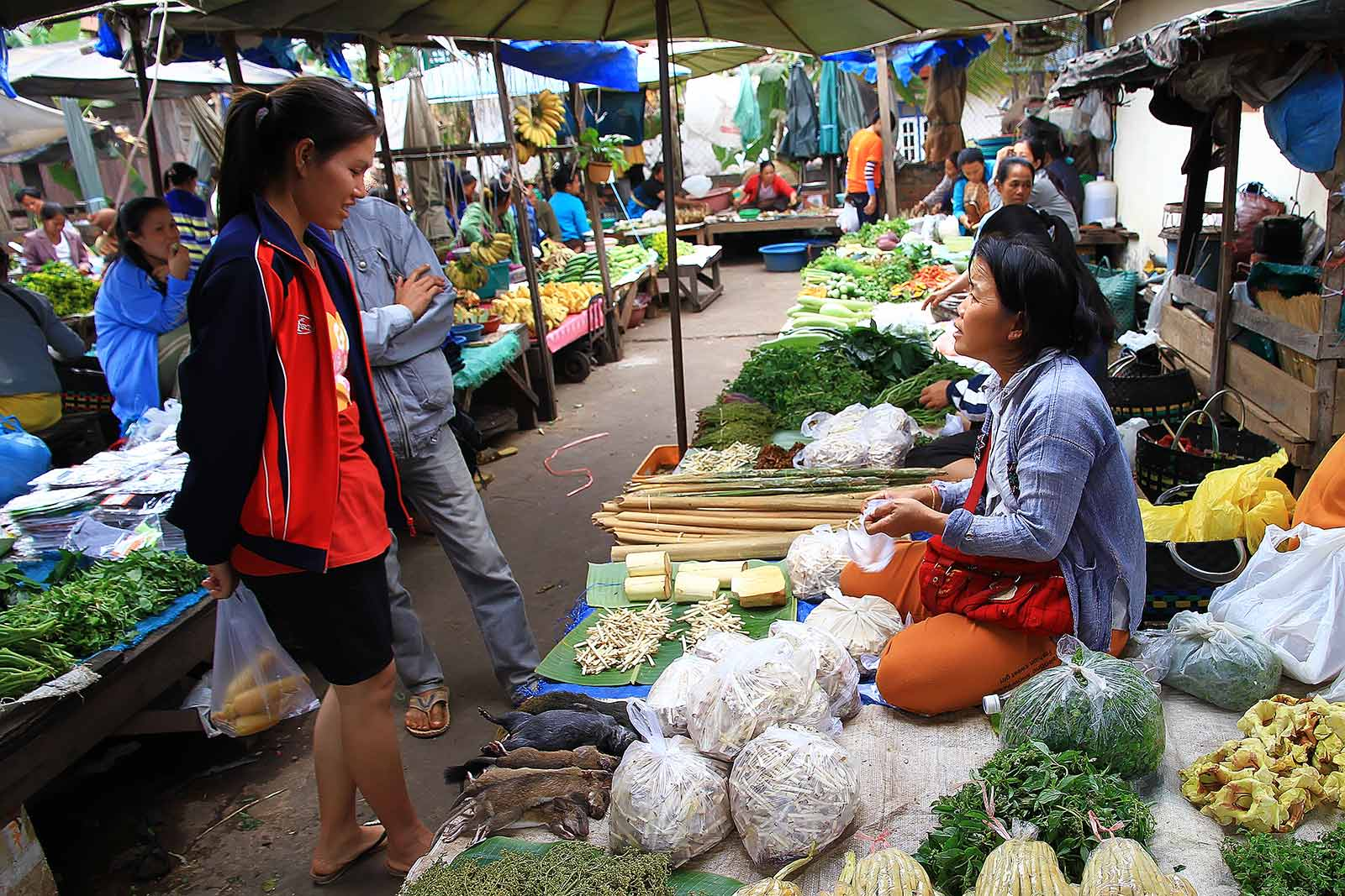 Local business at a market in Laos.