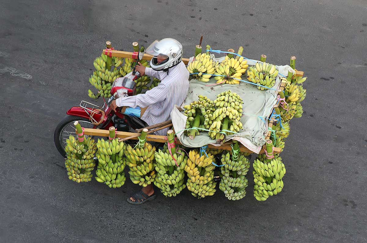 A fully loaded motorbike with bananas on the way to the Central Market in Phnom Penh.