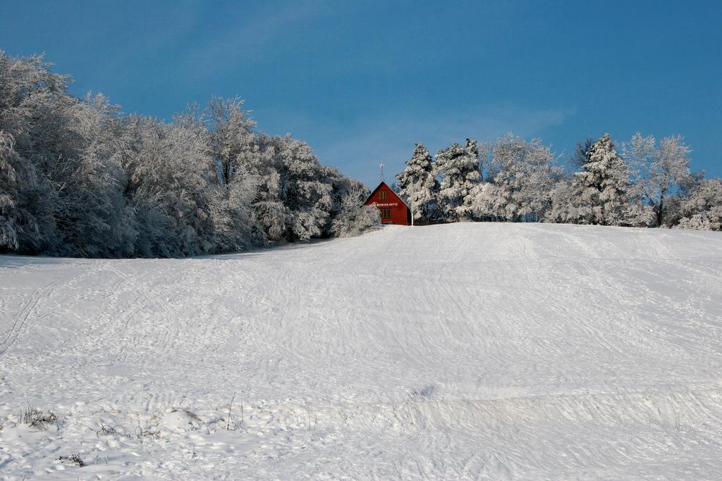 White - Winter wonderland in Austria.
