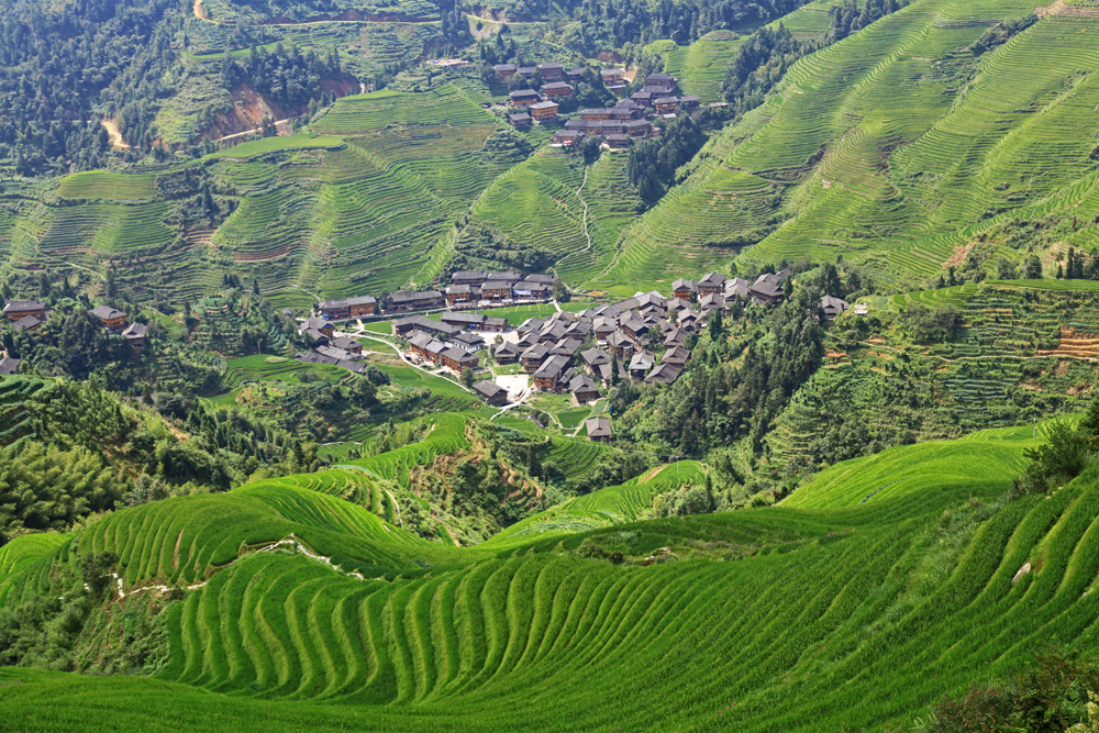 Dazhai village from viewpoint Nr. 1 on the Dragon's Backbone rice terrace.