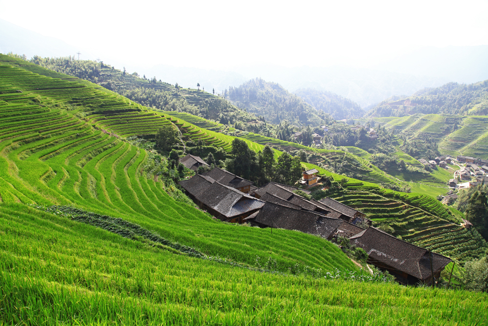 On the way up to viewpoint Nr. 3 of the Dragon's Backbone Rice Terraces.
