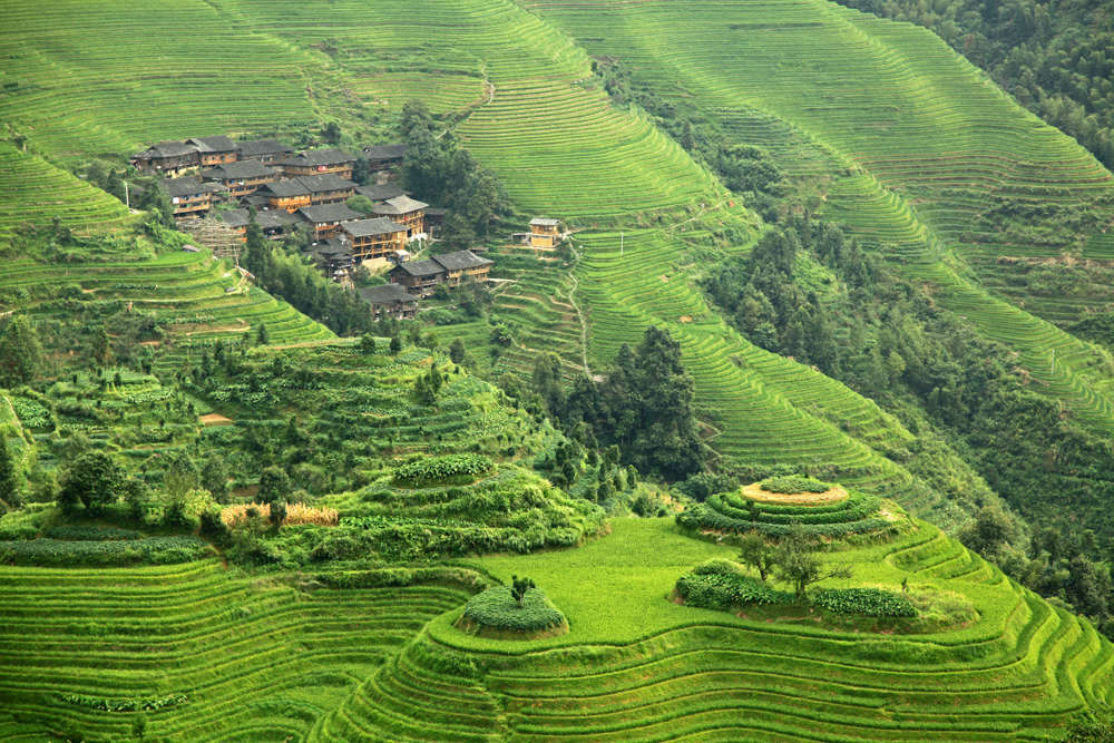 Rice terraces from Viewpoint Nr. 2 in Longsheng County, China.