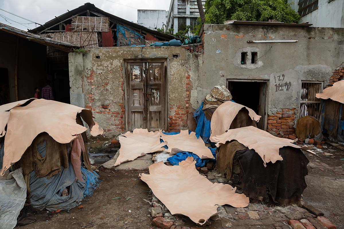 The Thousand Gardens, which is what Hazaribagh means in Bengali, is crammed with tanneries, big and small; one-room tin shacks where many tannery workers live.