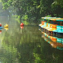 More paddle boats in Yuexiu park in Guangzhou, China.