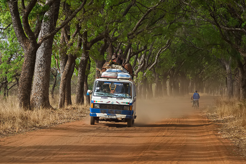 A bush taxi driving though an alley of trees in Banfora, Burkina Faso.
