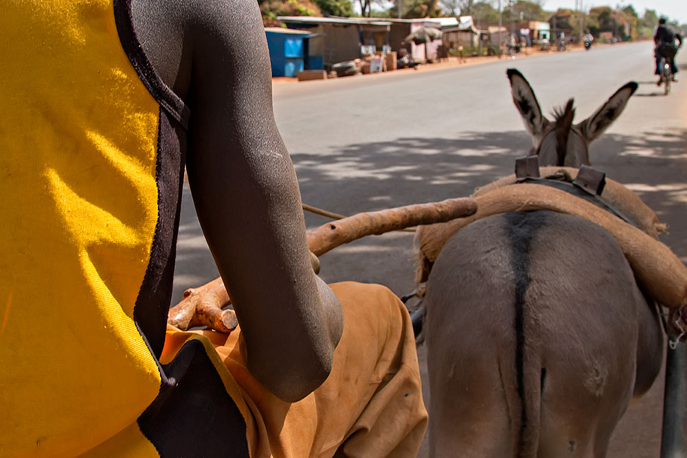 On this donkey cart we were on our way to the hotel in Orodara, Burkina Faso.