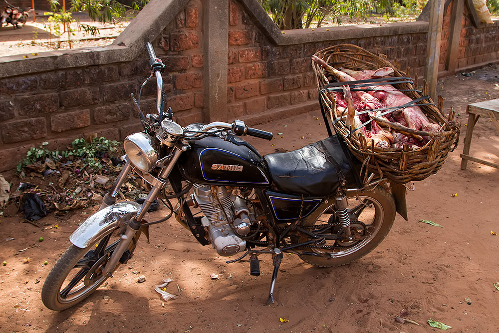 Transporting dead pigs on a motorbike in Orodara, Burkina Faso.