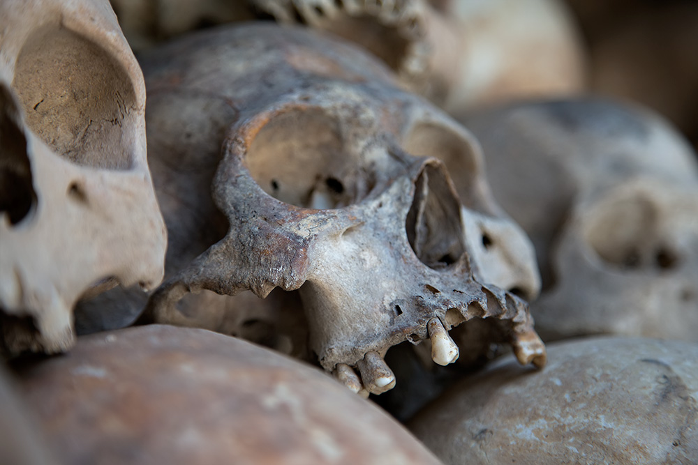 Human skulls at the Killing Fields of Choeung Ek in Phnom Penh, Cambodia.