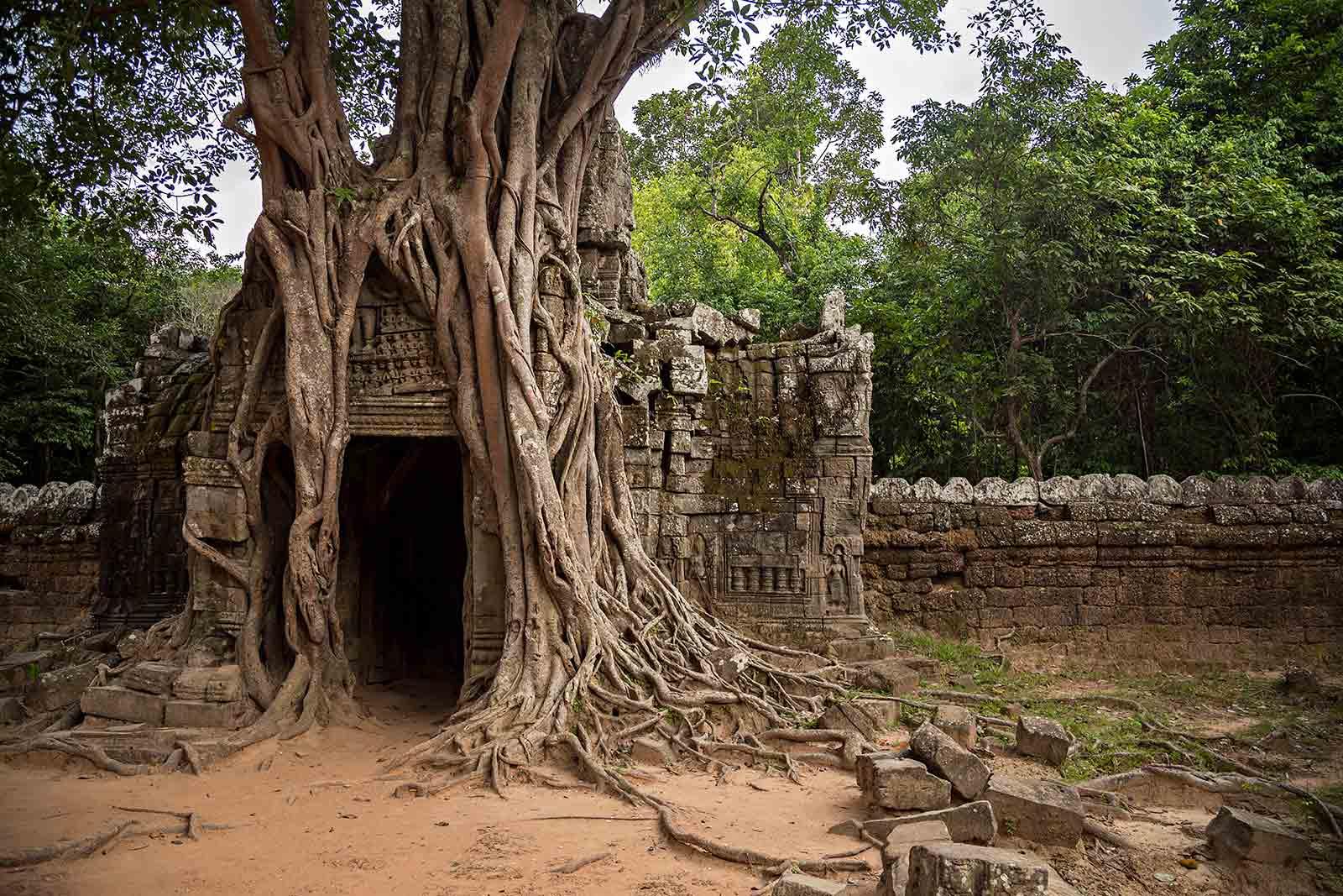 Ta Som temple in Angkor Wat, Cambodia.^