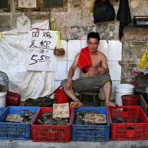 A dedicated turtle seller without his T-Shirt at a market in Guangzhou, China.