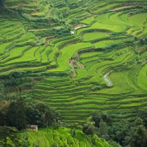 Honghe Hani Rice Terraces in Yunnan, China.