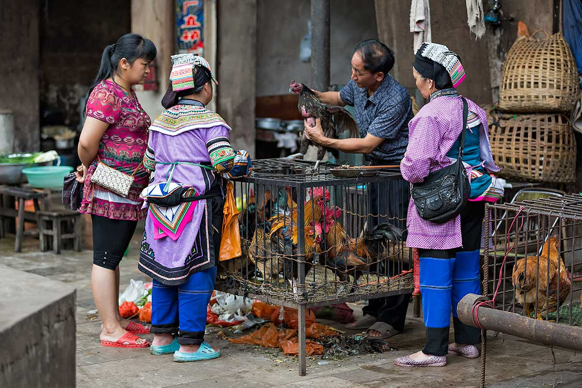 Shopping for chicken at the market in Xinjie, Yunnan Province, China.