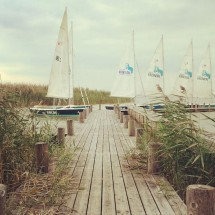 Sailing is one of the main reasons people come to Lake Neusield in Austria.