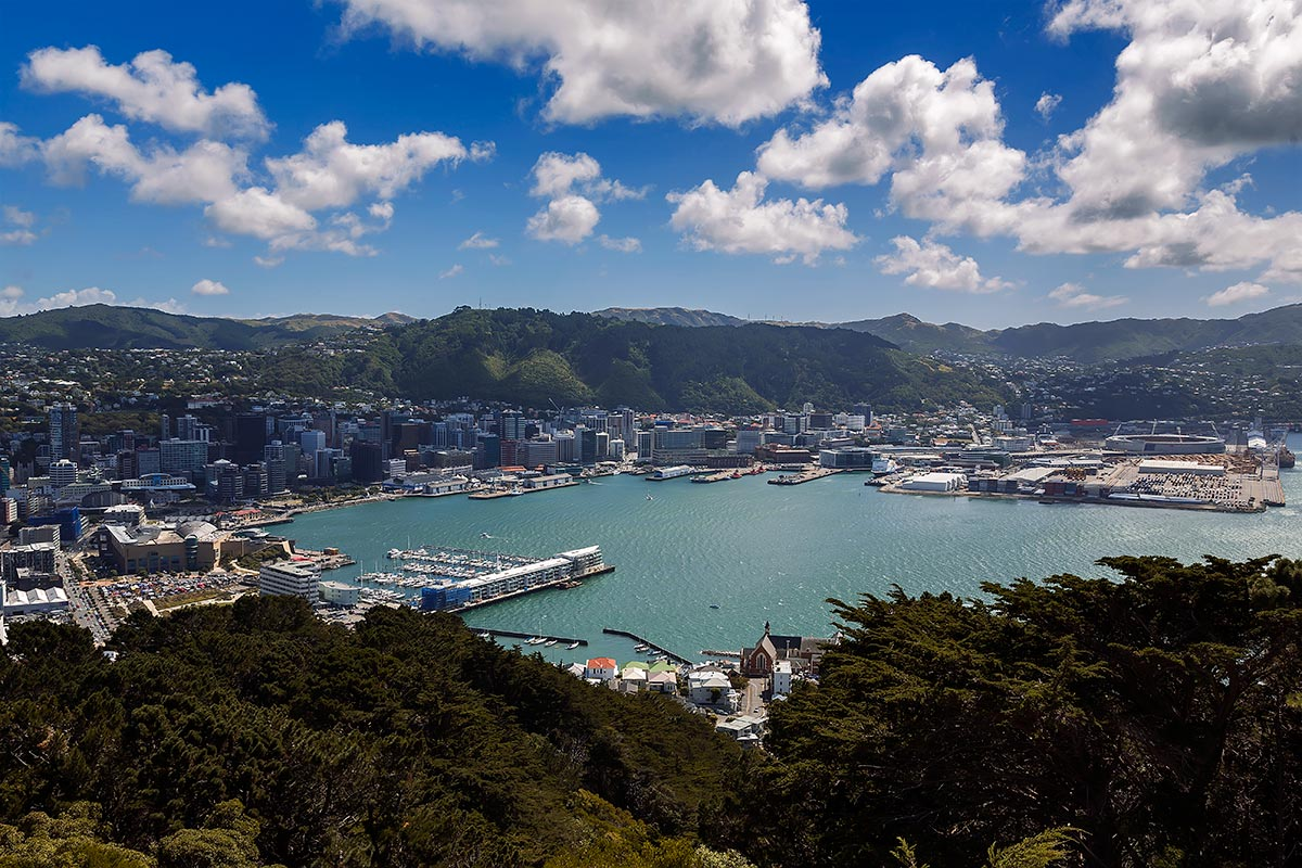 The view of Wellington from Mount Victoria Lookout.