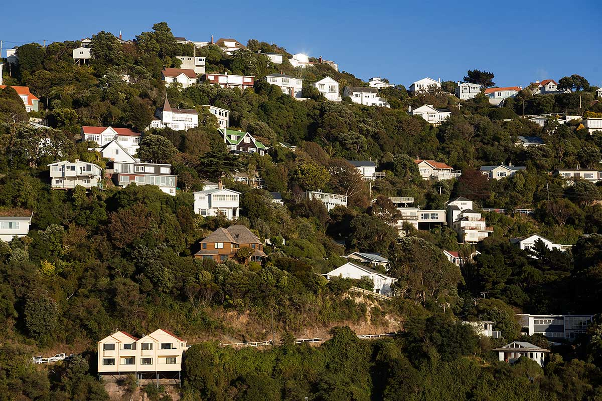 Mount Victoria in Wellington is a well known spot for visitors and looks like a nice area to live in.