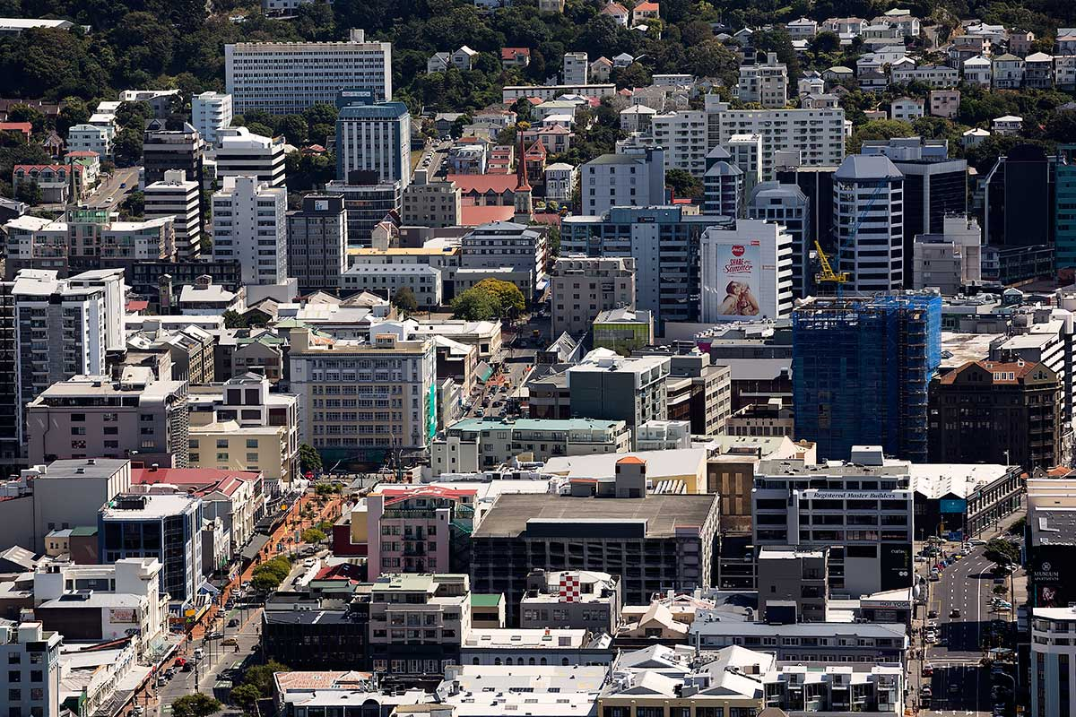 Downtown Wellington viewed from the top of Mount Victoria.