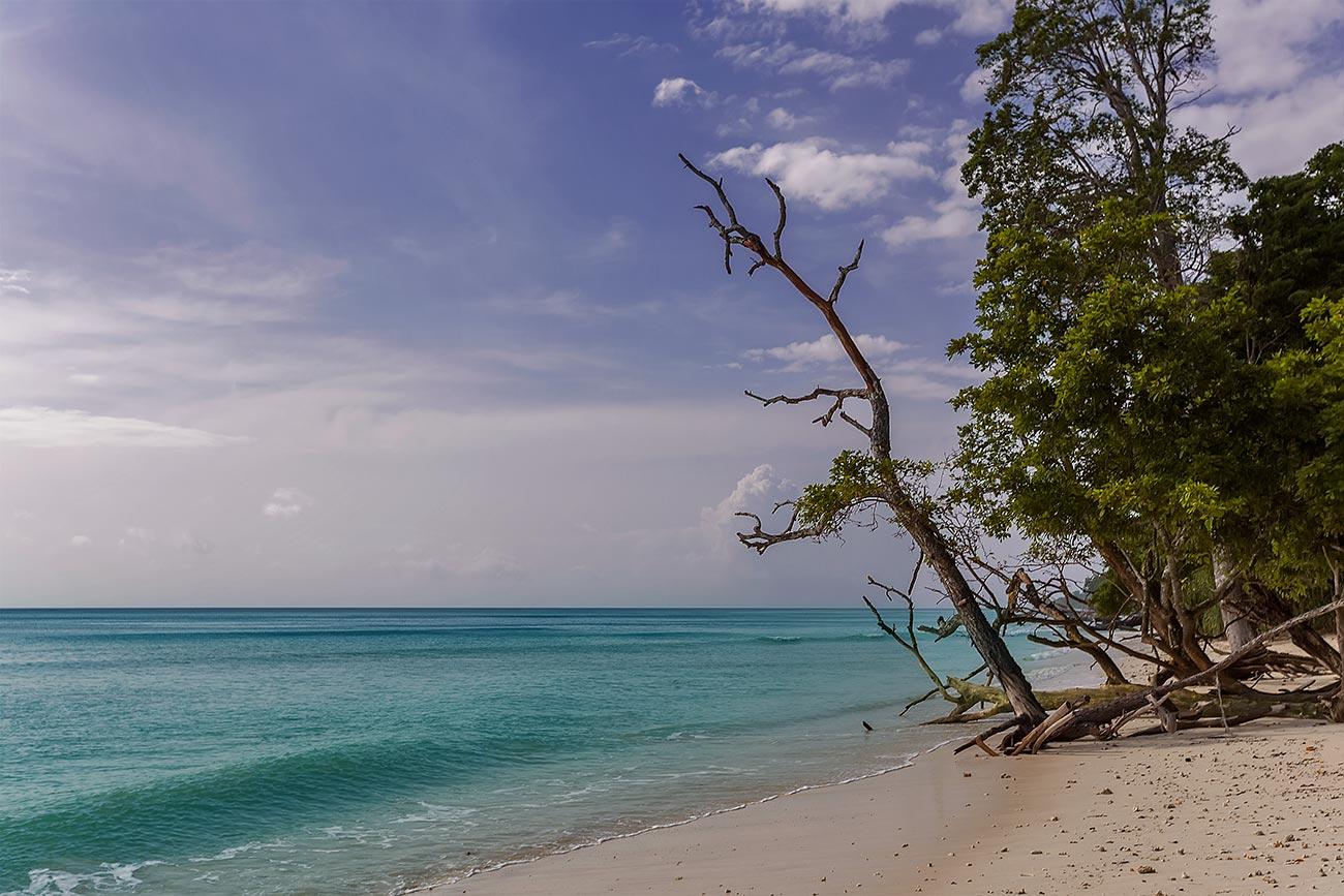 havelock-island-radhanagar-beach-andaman-islands-india-1
