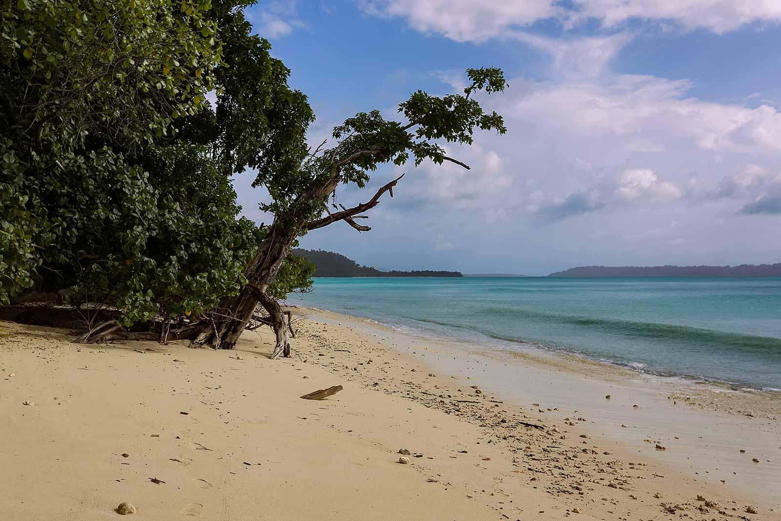 havelock-island-vijaynagar-beac-andaman-islands-india-8