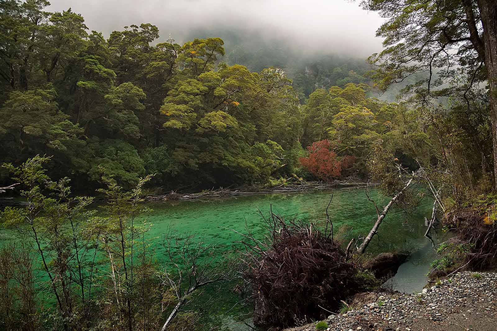 milford-track-day-1-clinton-river-landscape-new-zealand