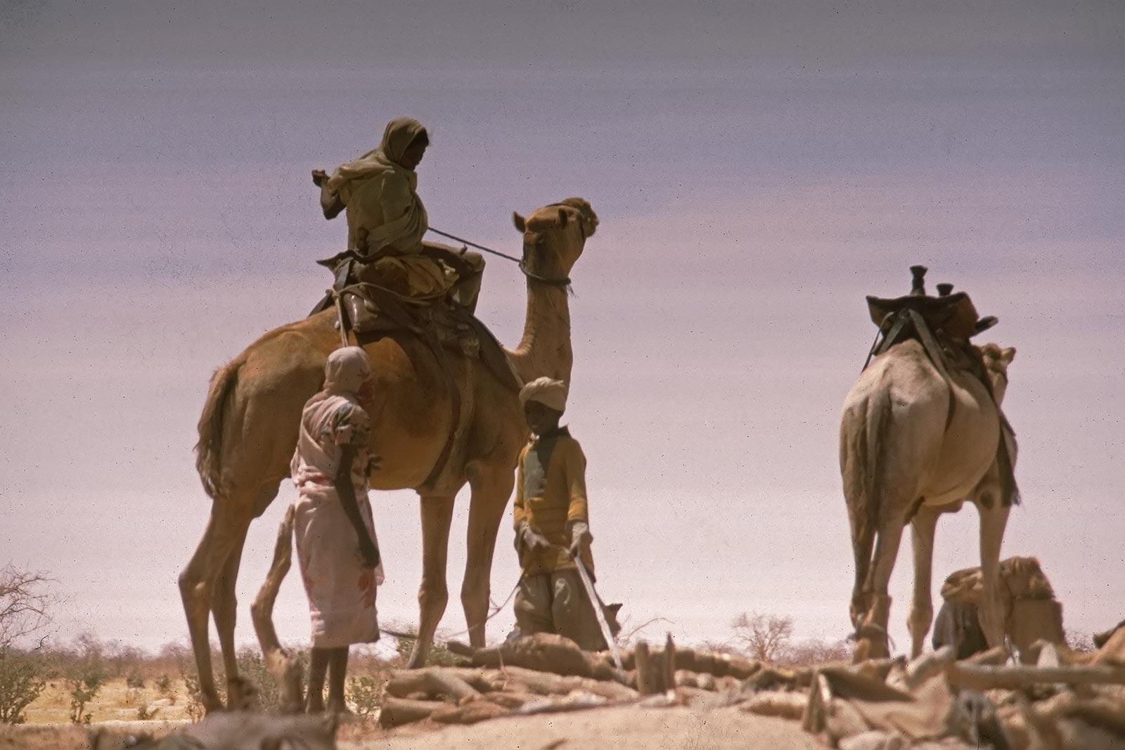 sudan-egypt-border-trucking-unimog