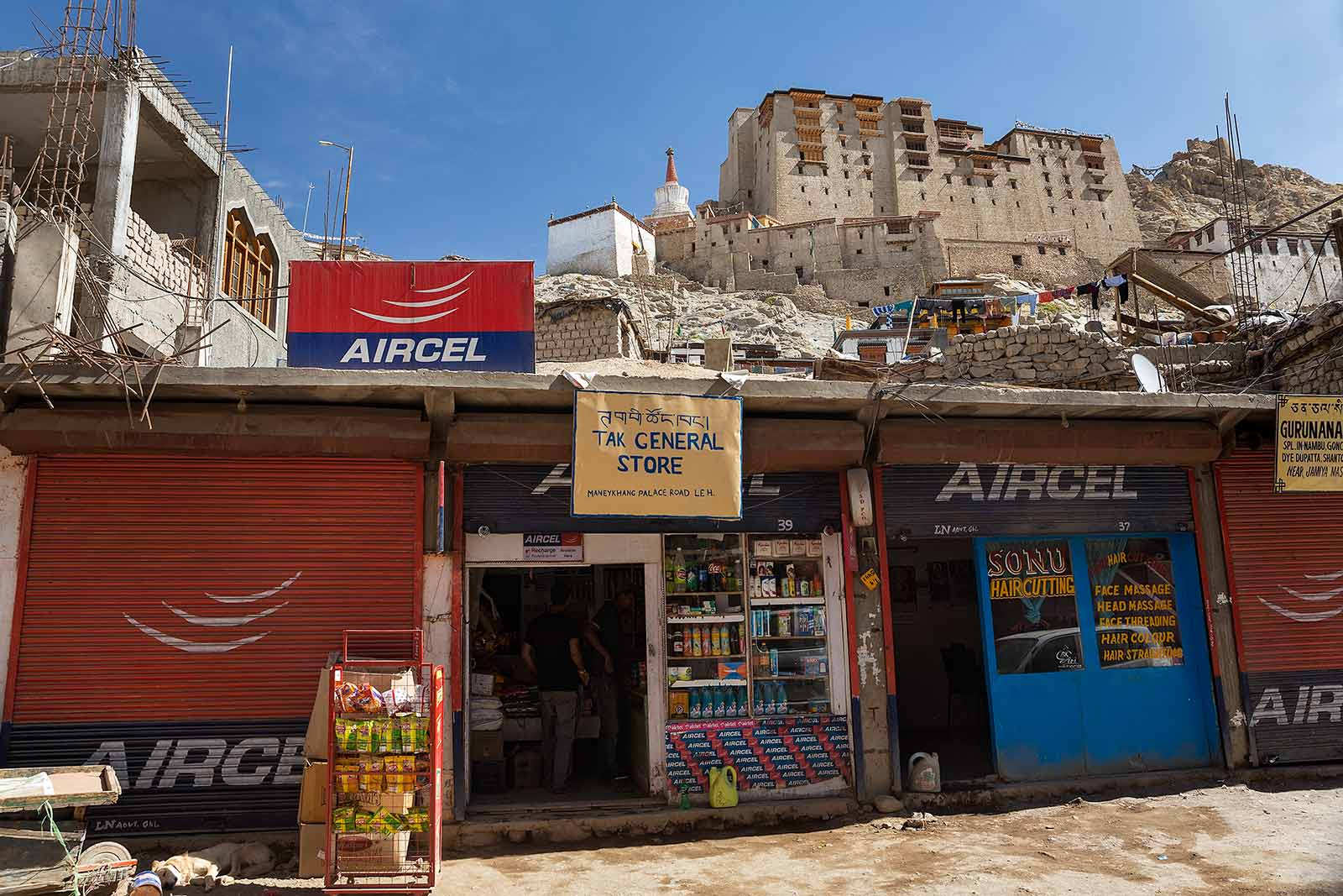 leh-palace-ladakh-kashmir-india