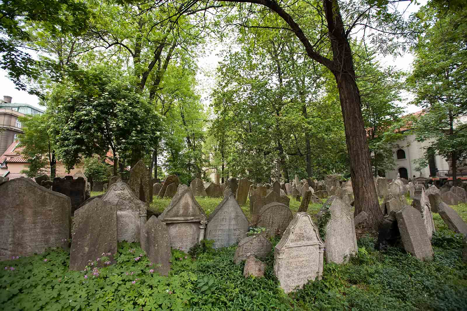 The Old Jewish Cemetery is among the oldest surviving Jewish burial grounds in the world and along with the Old-New Synagogue, it's the most important site in the Jewish quarter of Prague.