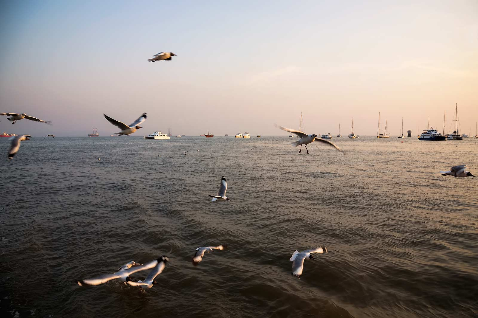 A Mumbai boat cruise at dawn will provide you with perfect photo opportunities.