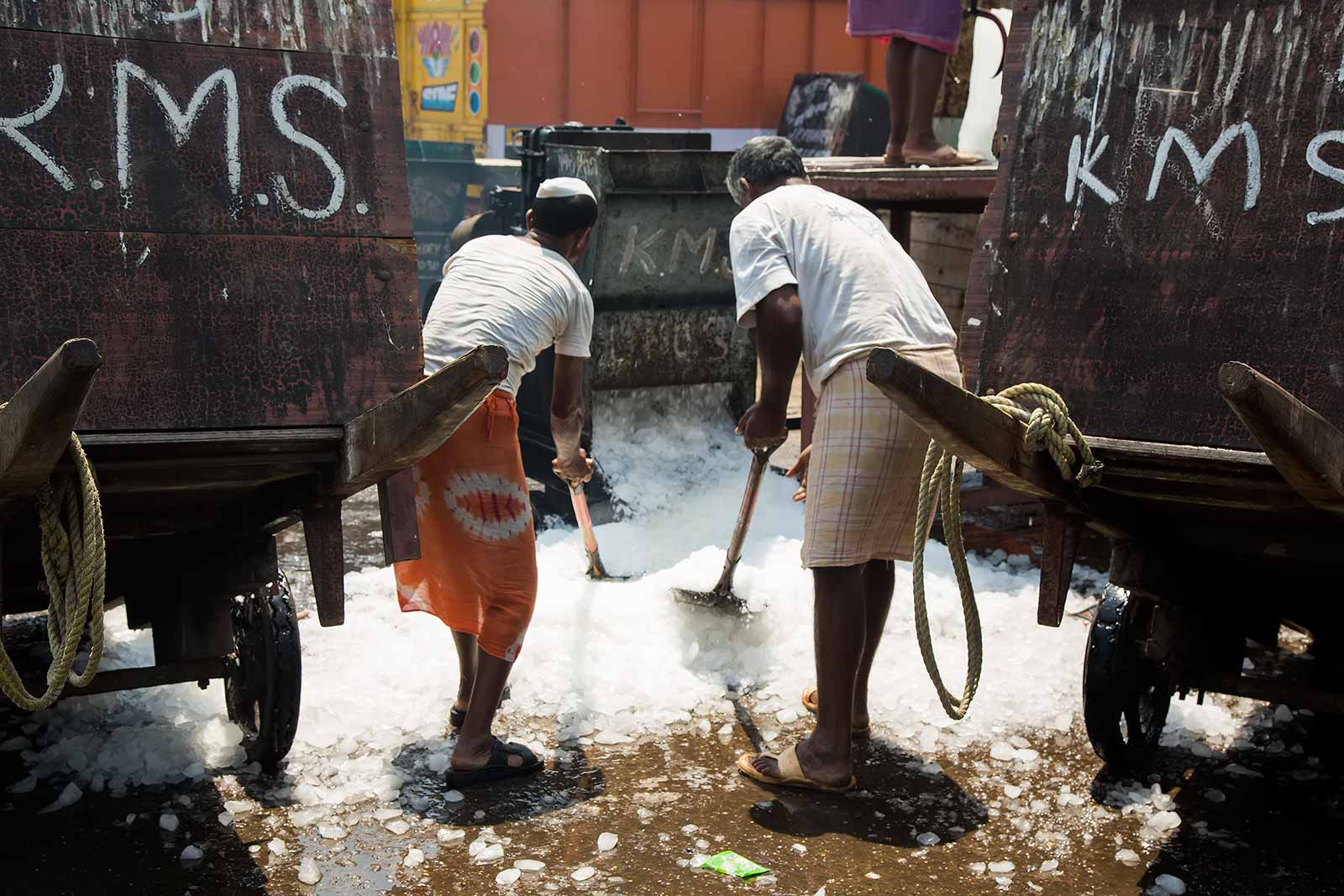 These men at the Sassoon Docks are filling up trailers with crushed ice, which are then pulled to the boats and packed into the stowage for the next trip out to sea.